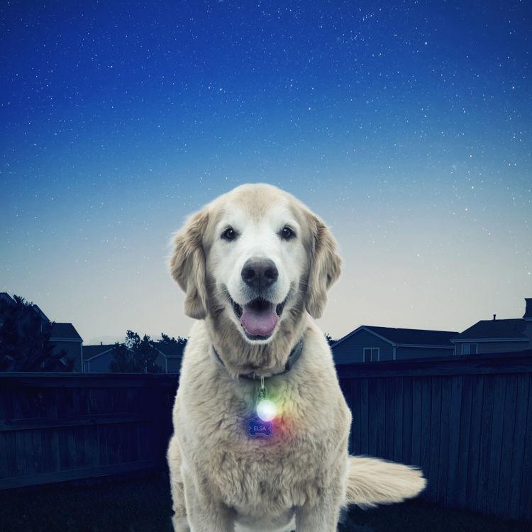 Mynd Nite Ize SpotLit LED Disco