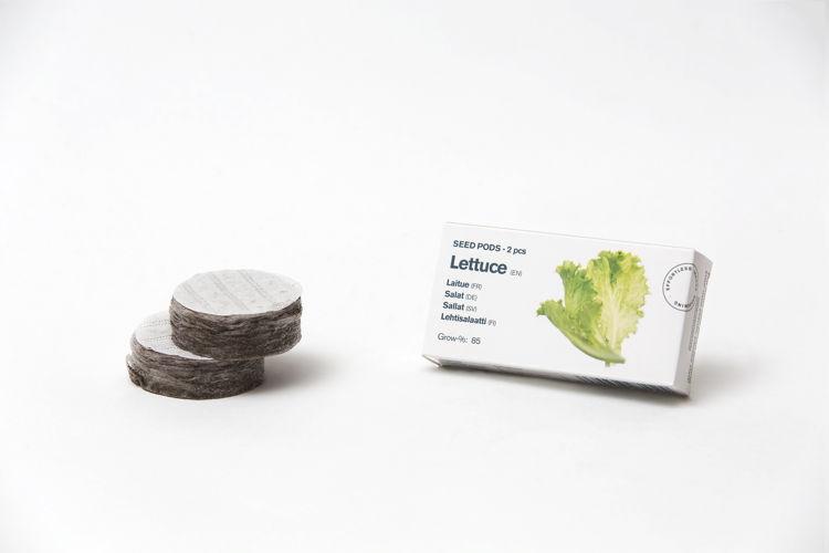 Mynd Tregren frækubbur salat